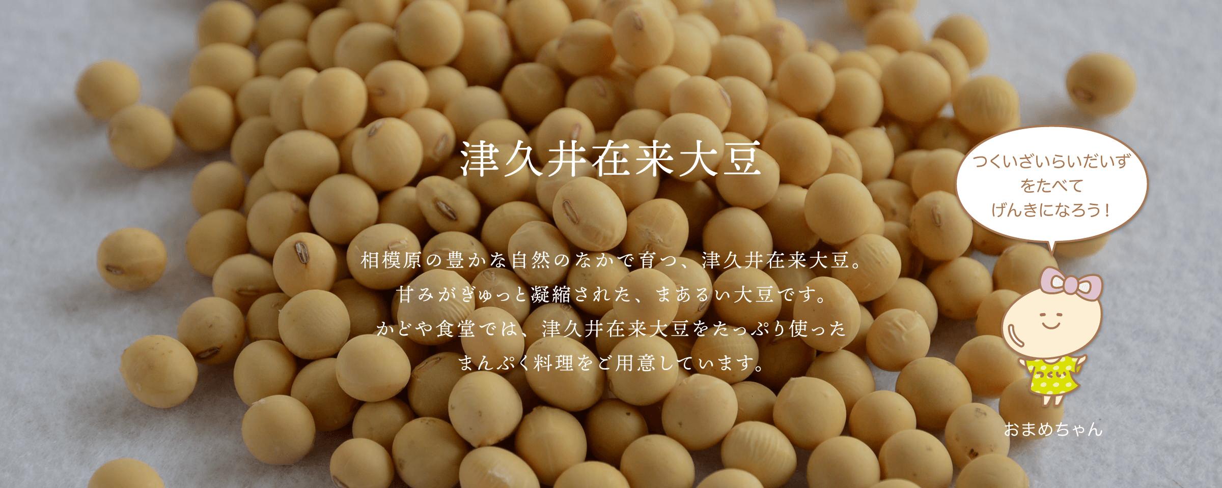 津久井大豆 相模原の豊かな自然のなかで育つ、津久井大豆。 甘みがぎゅっと凝縮された、まあるい大豆です。 かどや食堂では、津久井大豆をたっぷり使った まんぷく料理をご用意しています。